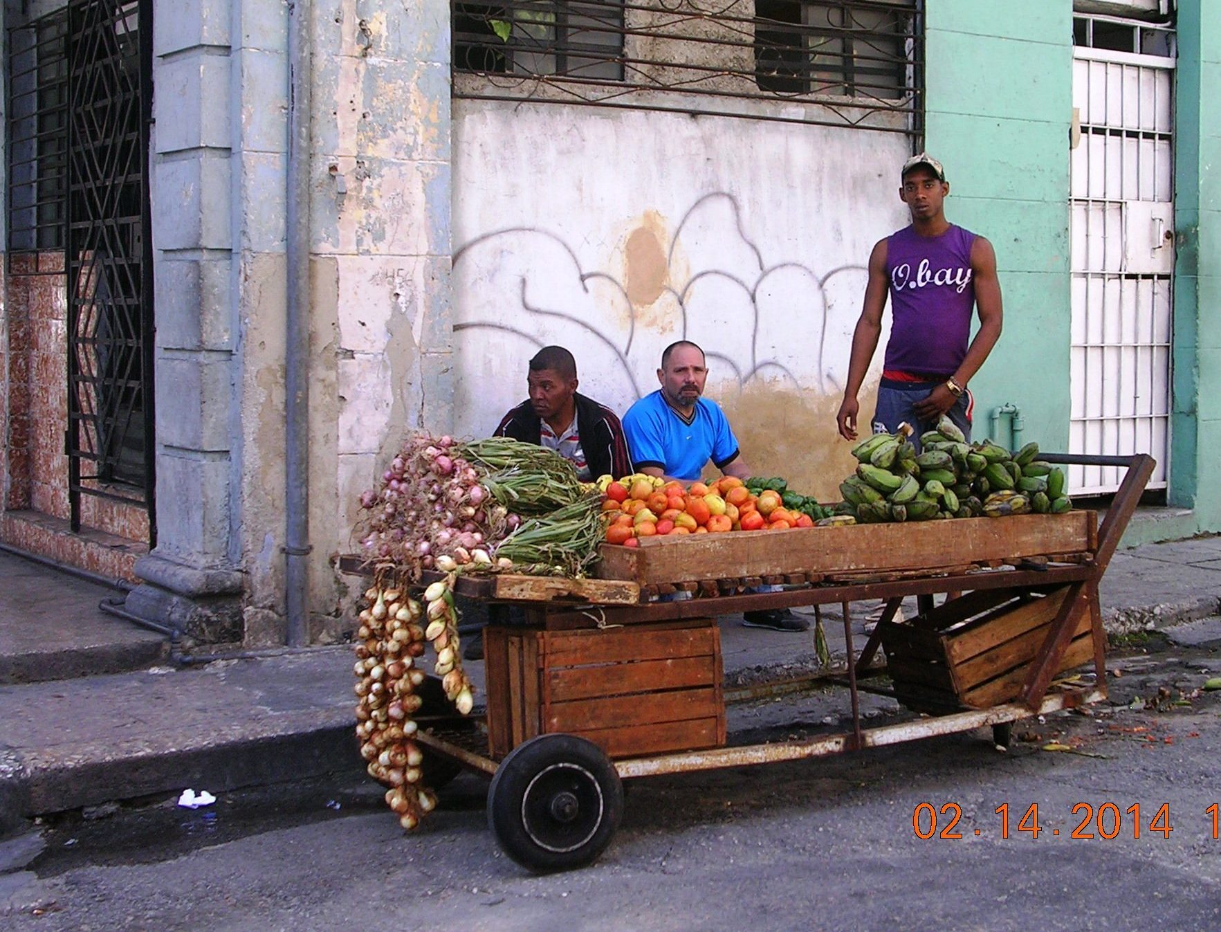 cuban food essay Some consider these to be the biggest cuban celebrations in the louisiana cuban community the seasoning is what gives cuban food its the essay was a.